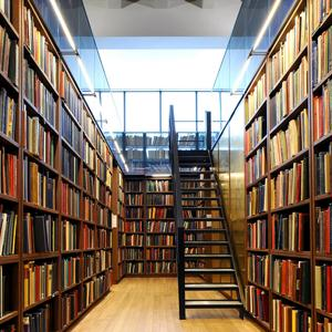 Библиотеки Холма