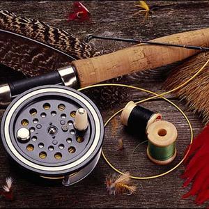 Охотничьи и рыболовные магазины Холма